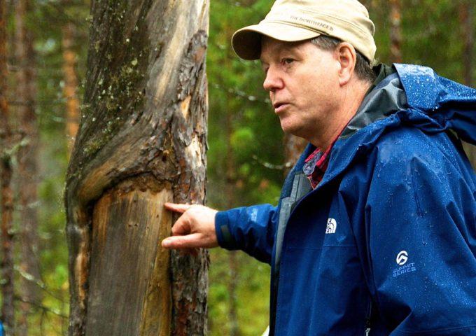 Professor Lars Östlund visar barktäkt i Lappland 2014.