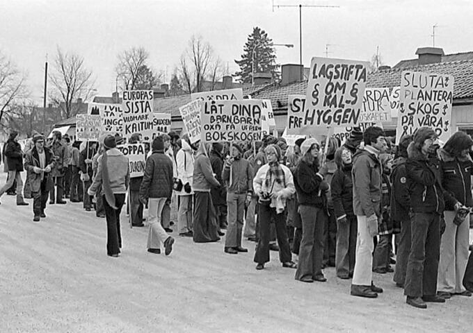 Protesterna mot skogsbrukets metoder på 1970-talet möttes länge med oförstående. Inte förrän man börjat inventera arter i de brukade skogarna och internationella papperskunder börjat ställa miljökrav förändrades lagstiftarnas och skogsbrukets syn. Bilden är tagen 1974 av Bertil Brunnegård.