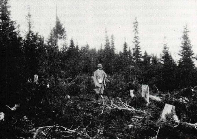 Hygge på Kroksjö hemman i Lycksele socken 1920-talet. Foto K E Kallin.