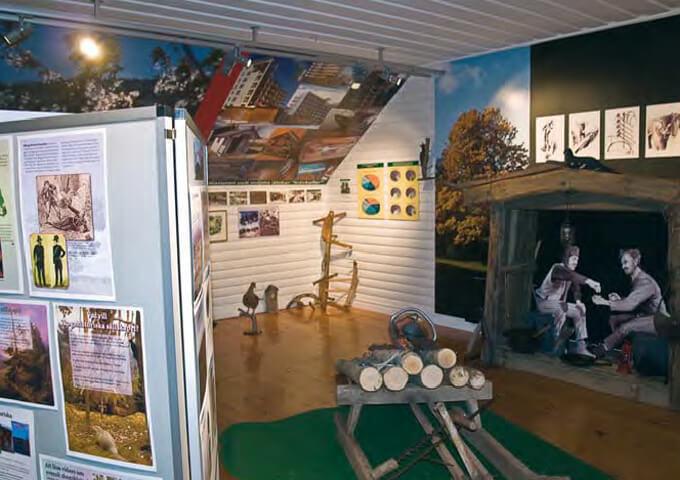 Del av utställningen Skogen vår framtid på Naturum Omberg.