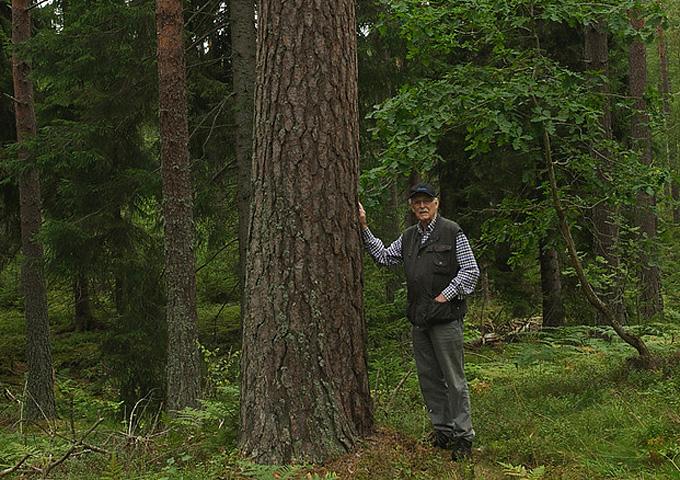 Sten Nordquist. Foto Lars Klingström.
