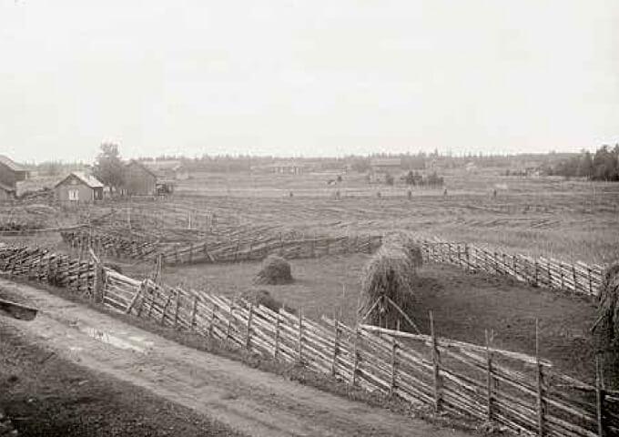 Gärdsgårdsmiljö i norra Uppland, 1920-tal. Foto Paul Sandberg.