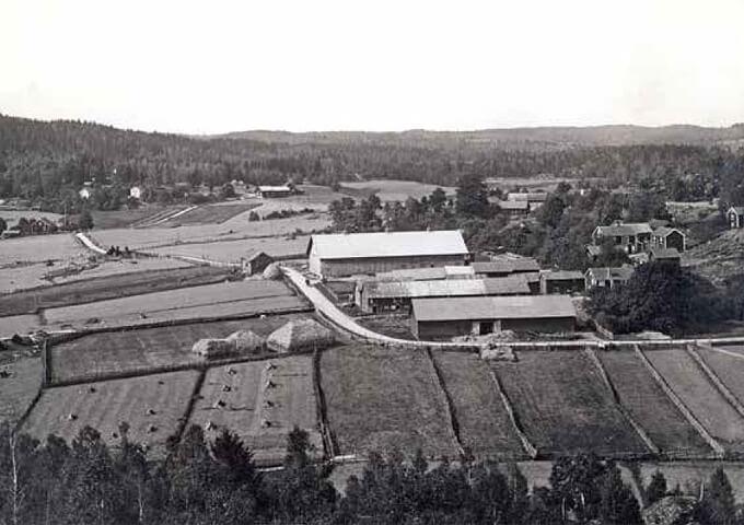 Den oskiftade Näsby by i Västra Eneby socken, Östergötland, 1898. Foto Johan Thorin.